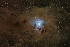 Dusty Iris Nebula from Astronomy Picture of the Day