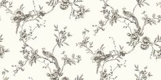 Chinoise Black (422801) - Arthouse Wallpapers - A classic, traditional bird of paradise in floral boughs design - available in a range of colours and also in a shadow print. Shown in the black on off white colourway. Please request sample for true colour match.