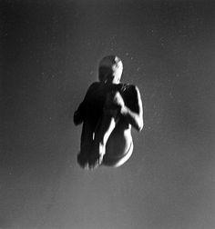 "John Gutmann, ""Tuck Dive"" (1939, printed ca. 1980) | photograph | gelatin silver print    Source: http://www.sfmoma.org/explore/collection/artwork/101286#ixzz1jCQTeeB4   San Francisco Museum of Modern Art"