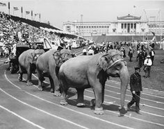 Circus enters Soldier Field for Labor Day, c. 1927. The Chicago Federation of Labor (CFL), a major union, hosted some spectacular Labor Day celebrations at Soldier Field in the 1920s. Edward N. Nockels, the CFL's secretary, wrote this letter advertising the 1927 festivities. For 1 dollar people could see soccer and boxing matches, a circus, and airplane stunts all at Soldier Field. Kids, adults, and even a few elephants sometimes marched into Soldier Field for the Labor Day revelry.  ICHi-64210.