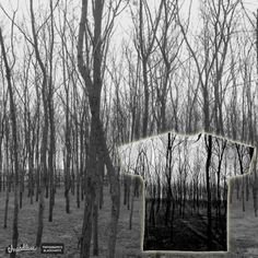 Creepy trees on Threadless