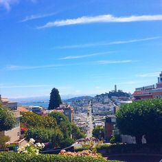 One of my favorite places so far 🔹🔹🔹🔹🔹🔹🔹🔹🔹🔹 #westcoast #california #sanfran #sanfrancisco #travelphotography #travel #travelgram #traveling #travels #travelblog #travelblogger #travelblogging #travelblogs #wanderlust #travelinstagram #lombard #lombardstreet