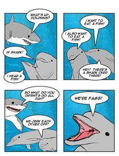 Fag dolphins