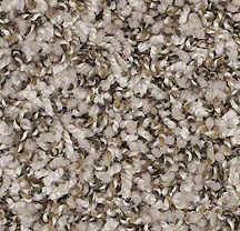 Carpet Color For The Bedrooms And Stairs Shaw Suede Buff Frieze Twist