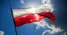 10 wyjątkowo bogatych superfoods prosto z… Polski! - dziecisawazne.pl - opiniotwórczy magazyn dla rodziców