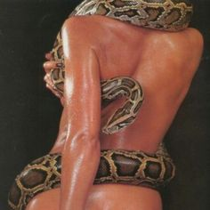 Find images and videos about sexy, model and snake on We Heart It - the app to get lost in what you love. Bad Girl Aesthetic, Red Aesthetic, Devil Aesthetic, Newsha Syeh, Snake Girl, Stevie Nicks, Facon, Looks Cool, Medusa