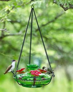 Blown Glass Hummingbird Feeder features perching spots for sprites to rest while feeding. With three glass flower feeder ports and innovative hanger, it now offers hummingbirds a comfortable spot to p