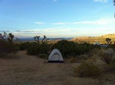 Camping Joshua Tree