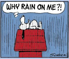 Não é só a ti, Snoopy! #MurphysLaw #LeiDeMurphy -> www.presenca.pt/livro/ficcao-e-literatura/humor/a-lei-de-murphy---volume-ii/