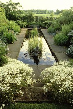 Country Garden design ideas and photos to inspire your next home decor project or remodel. Check out Country Garden photo galleries full of ideas for your home, apartment or office. Pond Landscaping, Ponds Backyard, Garden Pool, Backyard Waterfalls, Koi Ponds, Garden Water, Big Garden, Water Gardens, Garden Art