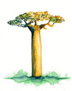 Bottle Baobab Print from my original watercolor painting 8x10 inch. $19.00, via Etsy.