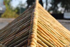 #huacal #hojas #textura