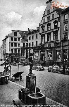 Скульптура яблочный вор на главной рыночной площади. Фонтан Евы (EvaBrunnen). Бронзовая скульптура девочки, сжимающей в руке яблоко. Работа С.Кауэра была создана в 1906 г и установлена сначала на пл. Пфердемаркт, а затем перед Альтштадтской ратушей. Скульптура изображала дочь С.Кауэра Клару. Послевоенная судьба этого произведения искусства неизвестна.