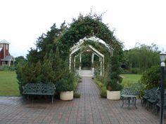 Just one of the beautiful garden scenes at the Antique Rose Emporium in Brenham.