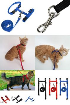 [Visit to Buy] 3 Colors Adjustable Pet Traction Harness Belt Cat Harness And Leash Nylon Products For Animals Cat Kitten Halter Collar #Advertisement