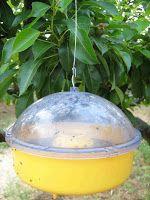 Κίτρινες οικολογικές παγίδες για έντομα Ceiling Lights, Lighting, Pendant, Home Decor, Decoration Home, Room Decor, Hang Tags, Lights, Pendants
