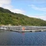 A leading Scottish salmon farming business is expanding with the creation of 40 new jobs in Stornoway and the Isle of Lewis, taking its workforce in the Hebrides to over 200, as demand for its high quality product rises in Europe, America and the Far East. - See more at: http://aquaculturedirectory.co.uk/hebrides-farmed-salmon-jobs/#sthash.Upu4WtYp.dpuf
