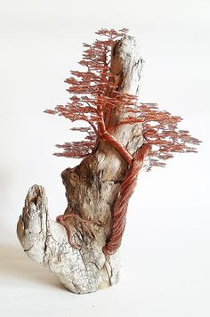Driftwood copper wire tree sculpture