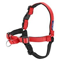Check this out at Amazon Dog Harness, Dog Leash, Diy Dog Collar, Healthy Pets, Dog Costumes, Dog Supplies, Dog Accessories, Dog Toys, Best Dogs