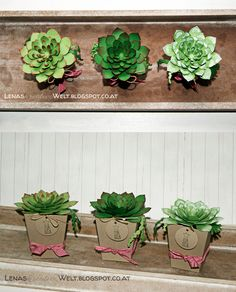 Sukkulenten Framelits, Oh so succulent Stampin Up Set