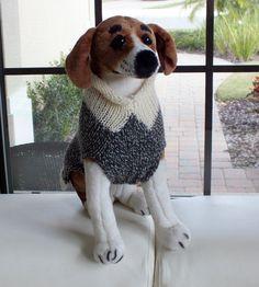 Dog Sweater Hand Knit Buddy Medium 15 inches long Merino by jenya2