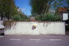 Jardinière. April, 2016. Canon A35F - Analog Photography - 35mm - STREET
