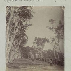 Nederlands-Indië, soldaten op de grote weg bij Ampenan tijdens de Lombok-expeditie 1894, anonymous - Rijksmuseum