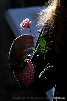 Uma flor zinha