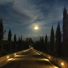 No es una pintura es real!!!! #Firenze #moon #night