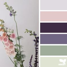 today's inspiration image for { flora hues } is by @aquietstyle ... thank you another beautiful #SeedsColor photo share, Emma!