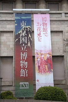 Cherry blossom viewing at the Museum 東京国立博物館 cherryblossomviewing museum 花見