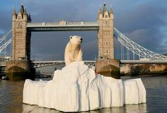 ECO ART: Polar Bears Floating Down the Thames! floating polar bear art, global warming art, climate change art, polar bears in the thames, m...
