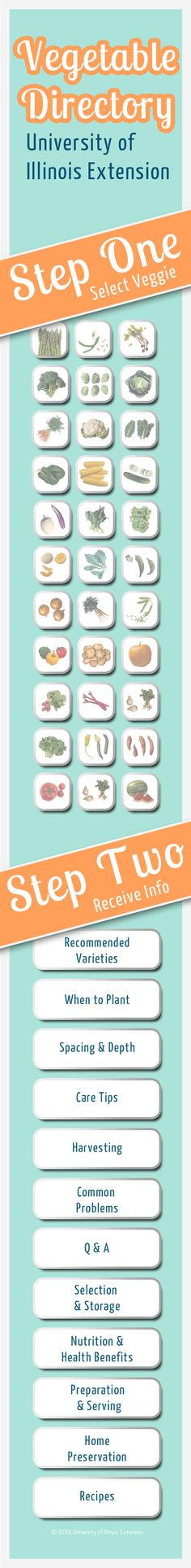 Pin now for gardening season! An excellent veggie gardening resource from University of Illinois Extension.