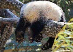 I can sleep anywhere :-)