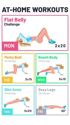 Full Body Gym Workout, Gym Workout Videos, Flat Belly Workout, Gym Workout For Beginners, Butt Workout, At Home Workouts, Gym Circuit Workouts, Easy Exercise Routines, Daily Workout At Home