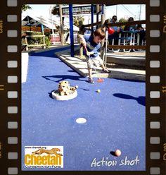 Kids love cheetahs    Follow along as the Purring Cheetahs travel the world and add photos of your own Cheetah adventures to join the fun!    www.facebook.com/chewbaakascheetahfriends  #chewbaakascheetahfriends  Cheetah Conservation Fund  www.cheetah.org  Mini Golf Cheetah