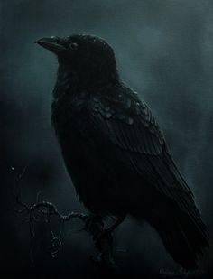 Raven painting by gimmegammi on deviantART