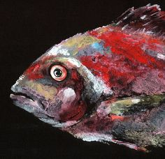 RED SNAPPER Gyotaku Fish Print Black Canvas by LGDunston on Etsy, $67.00