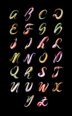 Ari Weinkle - 'Feelers' Typographic experiment ----- Feelers is a typographic experiment based on the movement of animal appendages.