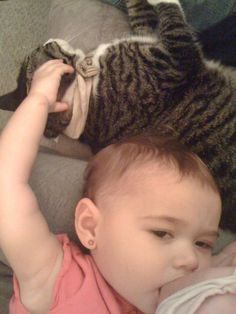 18 month old toddler breastfeeding and patting her cat at the same time, naww :)