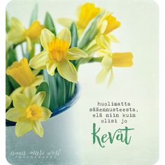 Spring Time, Place Cards, Anna, Place Card Holders, Quotes, Photography, Quotations, Photograph, Fotografie