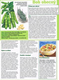 - Dieta Detox, Asparagus, Entertainment, Gardening, Vegetables, Food, Studs, Lawn And Garden, Essen