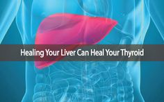 Did you know that you can make simple diet changes to help your liver and in doing so, help to heal your thyroid. Helping to balance your