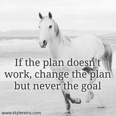 If the plan doesn't work change the plan. Not the goal. Equine Quotes, Equestrian Quotes, Equestrian Problems, Cowboy Quotes, Cowgirl Quote, Inspirational Horse Quotes, Motivational Quotes, Horse Riding Quotes, Cute Horse Quotes