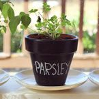 MOTHER'S DAY STALL - plant herbs early - What an awesome way to remember what is what!