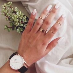daniel wellington + midi rings