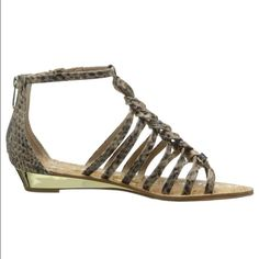 NWT [sam edelman] snakeskin gladiator sandals NWT Sam Edelman gladiator sandals in a neutral snakeskin pattern that goes with everything. Small gold wedge heel and gold hardware- zipper closure at back. A little too big for me! Sam Edelman Shoes Sandals
