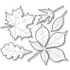 Impression Obsession - Die - Leaves-These are US-made steel dies compatible with most table-top die cutting machines. The group together measures 3 x Diy And Crafts, Crafts For Kids, Arts And Crafts, Paper Crafts, Autumn Crafts, Autumn Art, Autumn Leaves, Leaf Template, Owl Templates