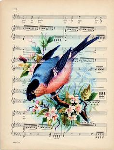 Flowers Background Vintage Sheet Music 70 Ideas For 2019 Sheet Music Art, Vintage Sheet Music, Vintage Sheets, Art Music, Music Sheets, Vintage Birds, Vintage Images, Bluebird Vintage, Music Bird