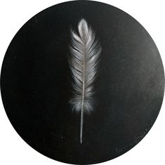 Available to buy online, Feather Study by South African artist Nadine Hansen, small round oil on board size 18 cm in diameter. South African Artists, Online Art Gallery, Simply Beautiful, Feathers, Pattern Design, Body Art, Street Art, Eggs, Oil